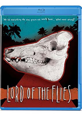 lord of the flies and dna Lord of the flies allegory lesson + 2 worksheets (no  (simon speaks to the lord of the flies)  creative and innovative scheme of work for the play dna by dennis.